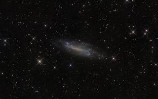 NGC4236