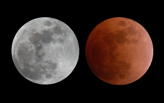 Lunar Eclipse, Feb 20 2008