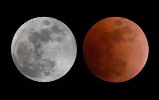 Lunar Eclipse, Feb 20 2008
