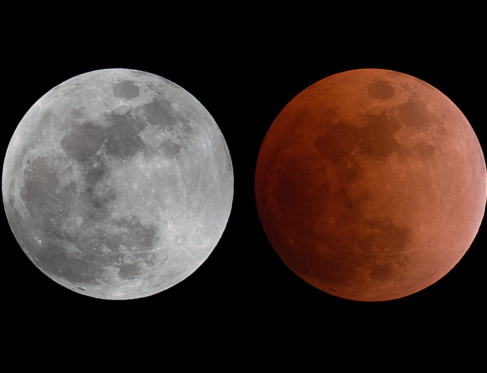 Lunar Eclipse, February 20, 2008