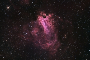Swan Nebula