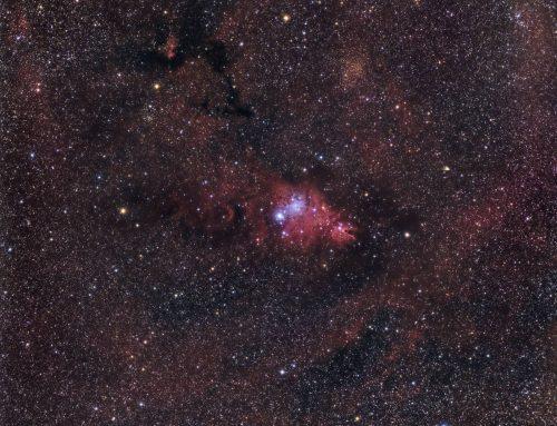 Cone Nebula Region