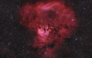 NGC 7822 Region