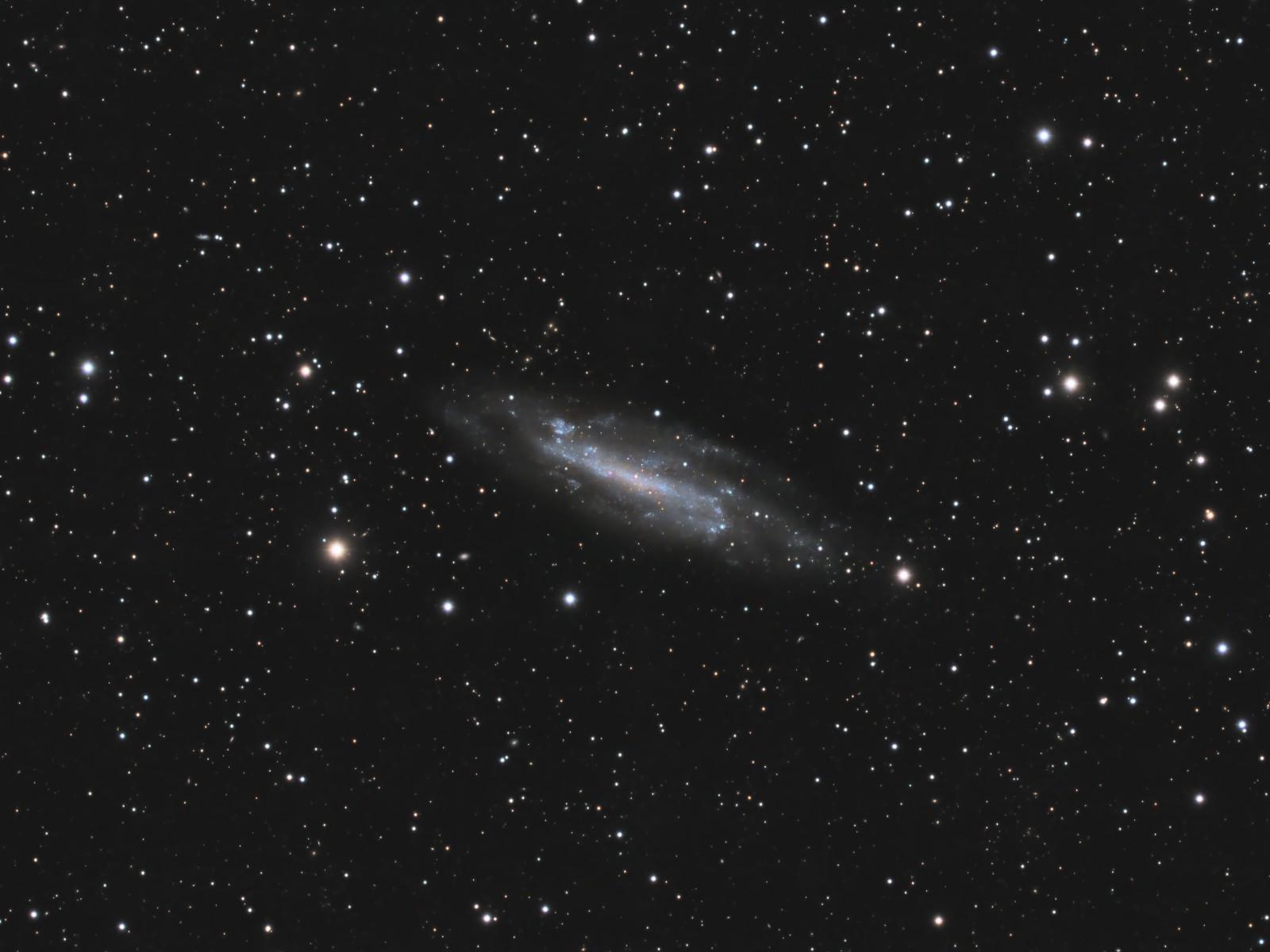 NGC 4236 – Barred Spiral Galaxy