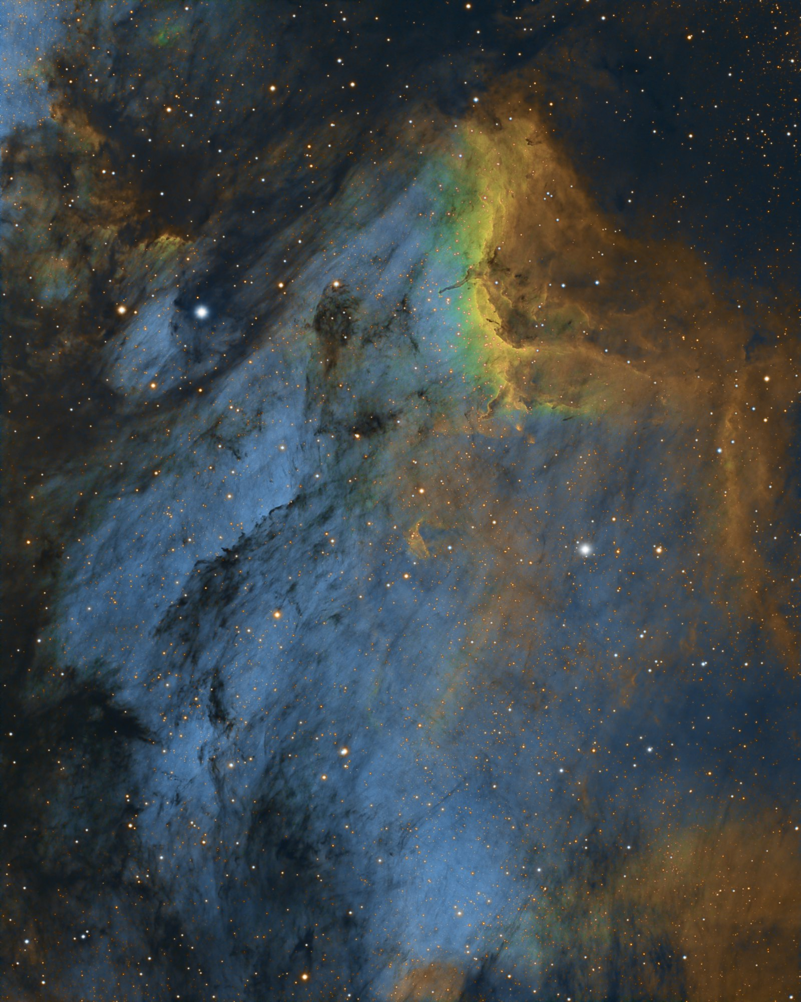 The Pelican Nebula