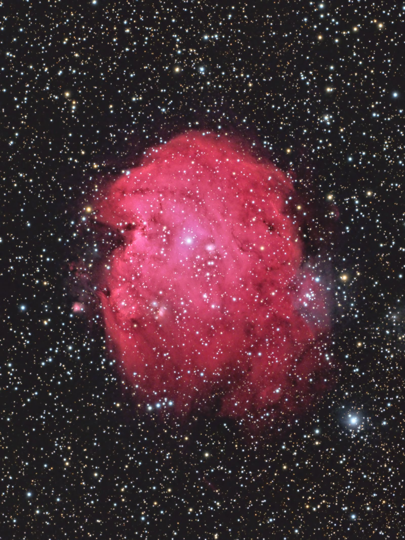 Monkey Head Nebula (2021)